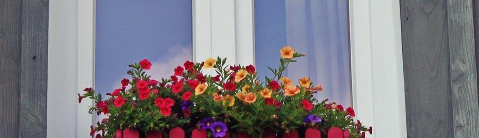 raam en bloemen ervoor
